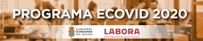 Programa ECOVID 2020